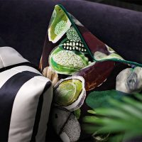 Christian Lacroix Soft Manaos Onyx cushion